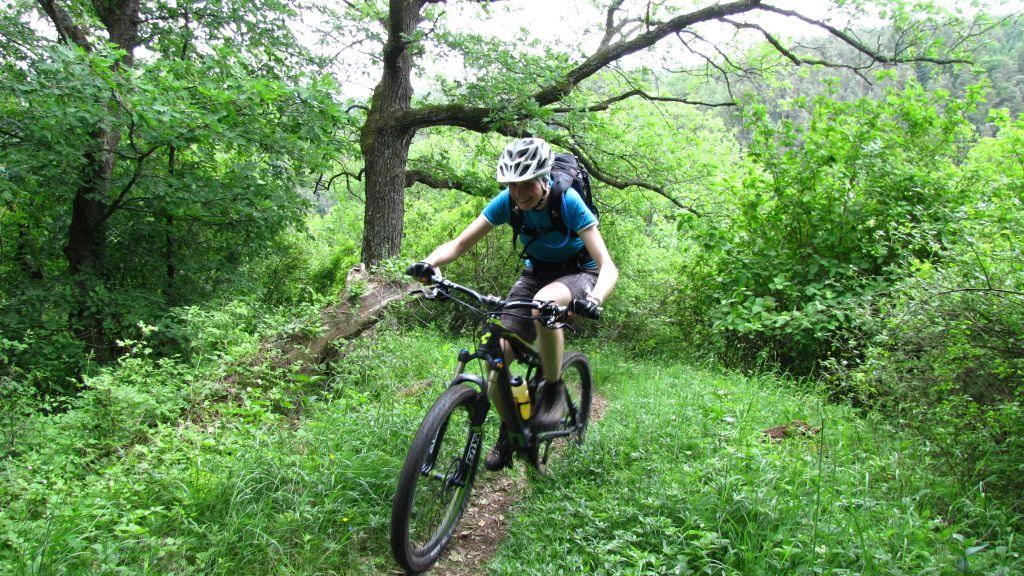 Mountainbikeguide im Kamptal